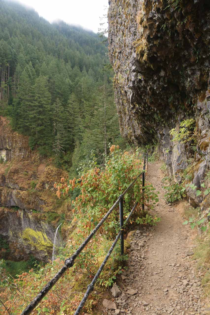 Context of the basalt cliffs and Elowah Falls down below
