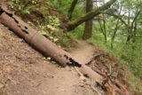 John_B_Yeon_SP_140_08172017 - Going past some corroded pipes strewn across a couple of the sections of the Upper McCord Creek Falls Trail