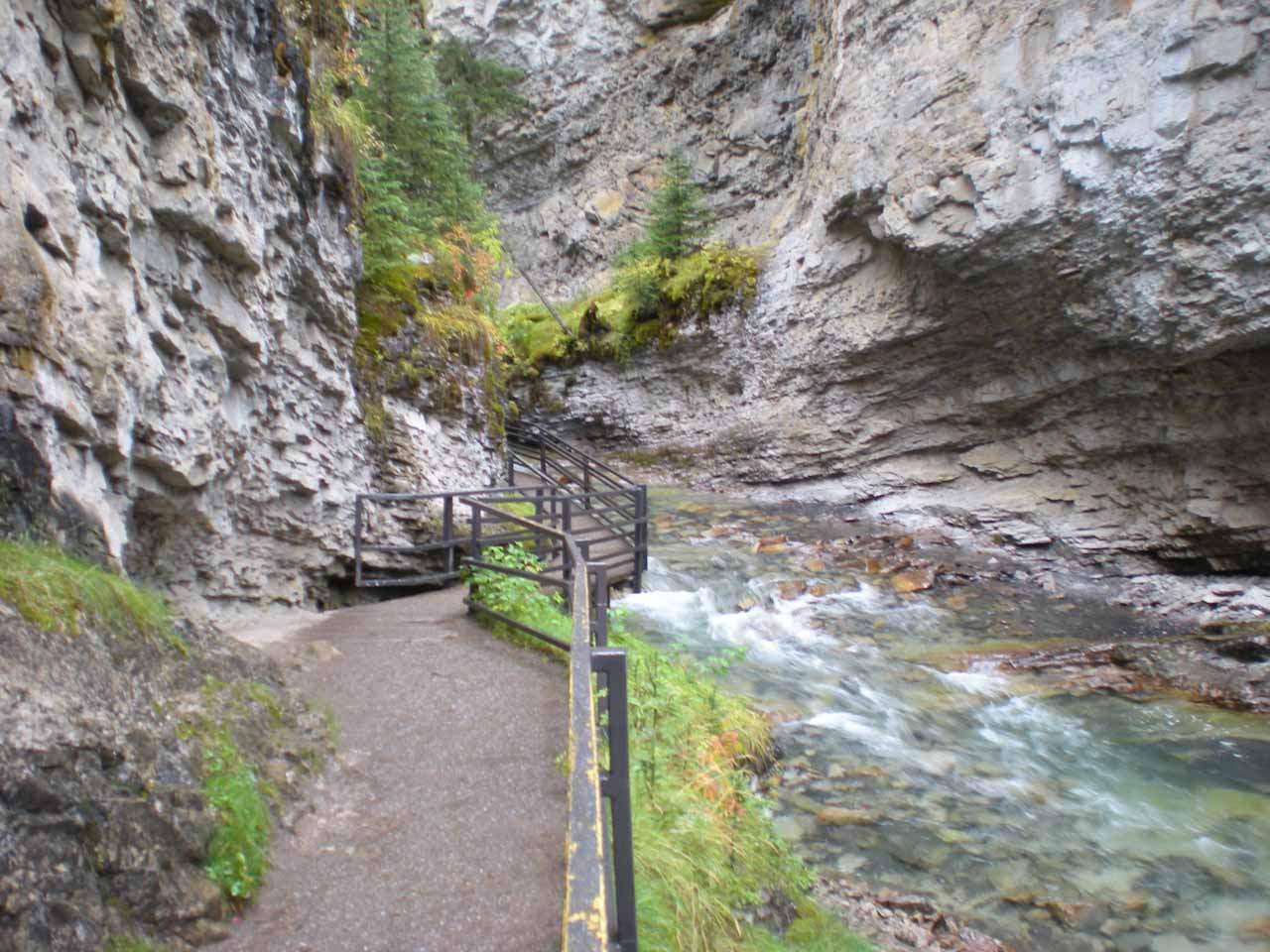 The walkway deep inside the gorge of Johnston Canyon, which itself made for a very atmospheric visit as we were hugging vertical cliffs while seeing gorge scenery both above and below us