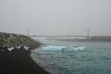 Jokulsarlon_009_08092021 - Context of one of the icebergs stuck ashore just downstream of the single-lane road bridge below Jokulsarlon