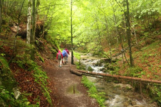 Josefstaler_Waterfall_095_06282018 - People hiking along the Hachelbach en route to the base of the Josefsthaler Waterfall