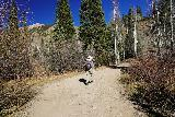 Judd_Falls_017_10162020 - Julie going past some rocky stretches of the rough road between the Judd Falls lower parking area and the Copper Creek Trailhead