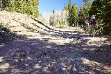 Judd_Falls_030_10162020 - Julie walking past some very rocky sections of the road between the lower parking area for Judd Falls Trail and the Copper Creek Trailhead (i.e. the upper parking area for Judd Falls Trail). This made us glad that we didn't drive further up this trail just to save a half-mile in each direction