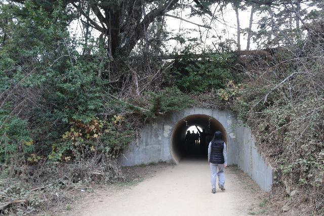 Julia_Pfeiffer_Burns_SP_037_11172018 - Julie approaching the tunnel underneath the Hwy 1