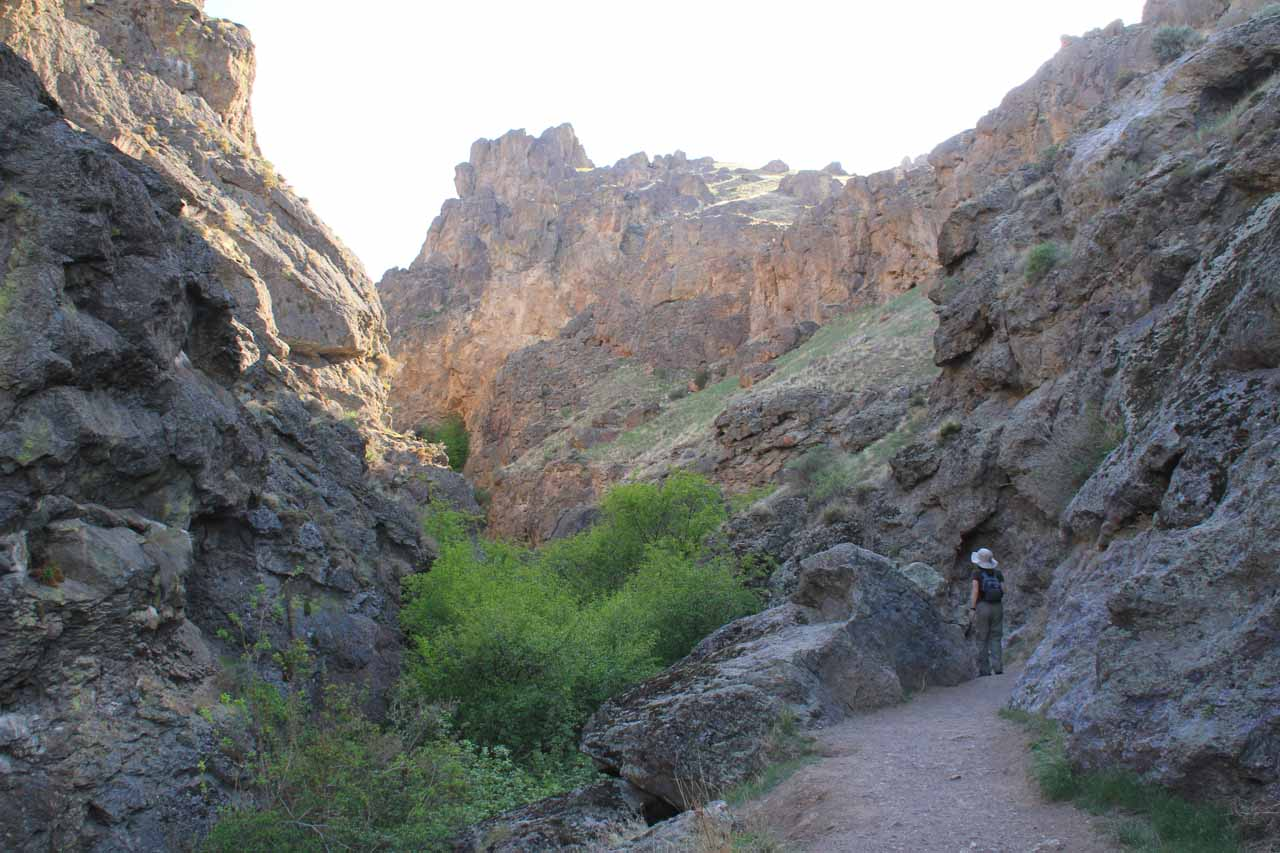 Julie walking within the confines of Jump Creek Canyon