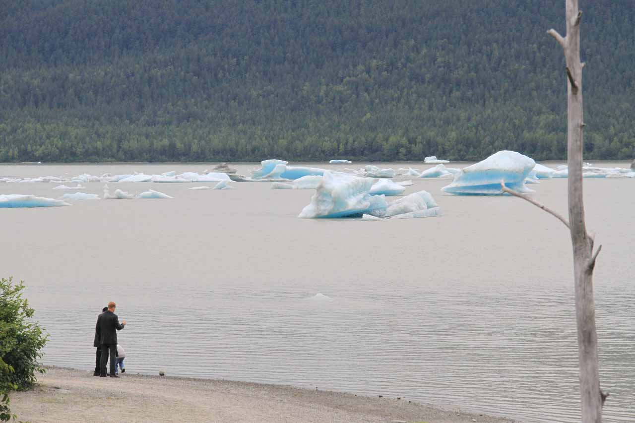 Some people checking out the icebergs