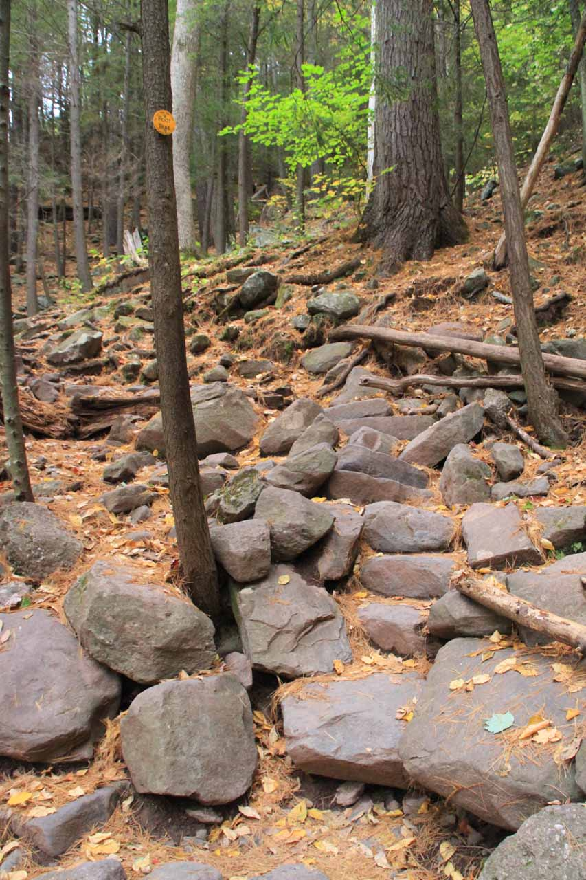 Shortly after passing by the interpretive sign and roadside cascade, the trail climbed steeply up this rocky path