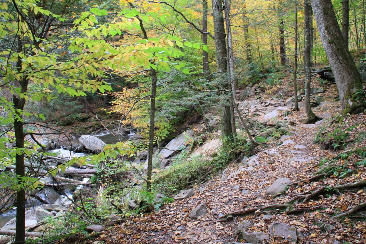 The trail pretty much followed along the Kaaterskill Creek