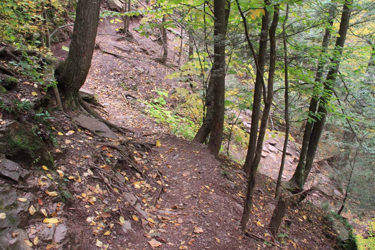 Even after seeing the Upper Kaaterskill Falls up close, I still had to go back and negotiate the narrow and potentially dangerous trail to return to the main trail