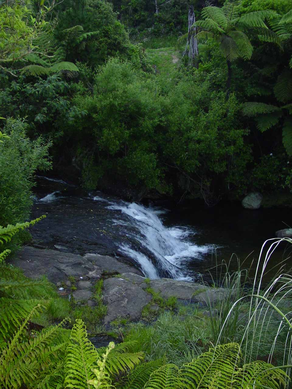 A small cascade on the Kaiate Stream as I was starting the hike