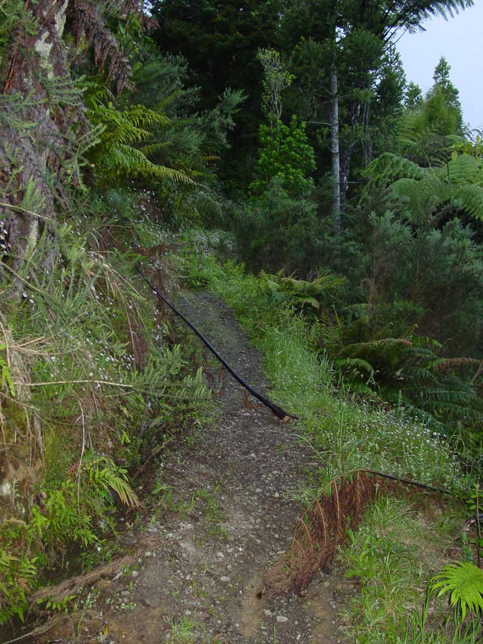 Initially, I had briefly made a wrong turn before realizing that this section of track went back to the road bypassing the car park