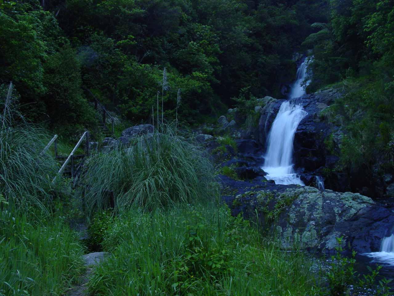 Contextual view back towards the Upper Rerekawau Falls