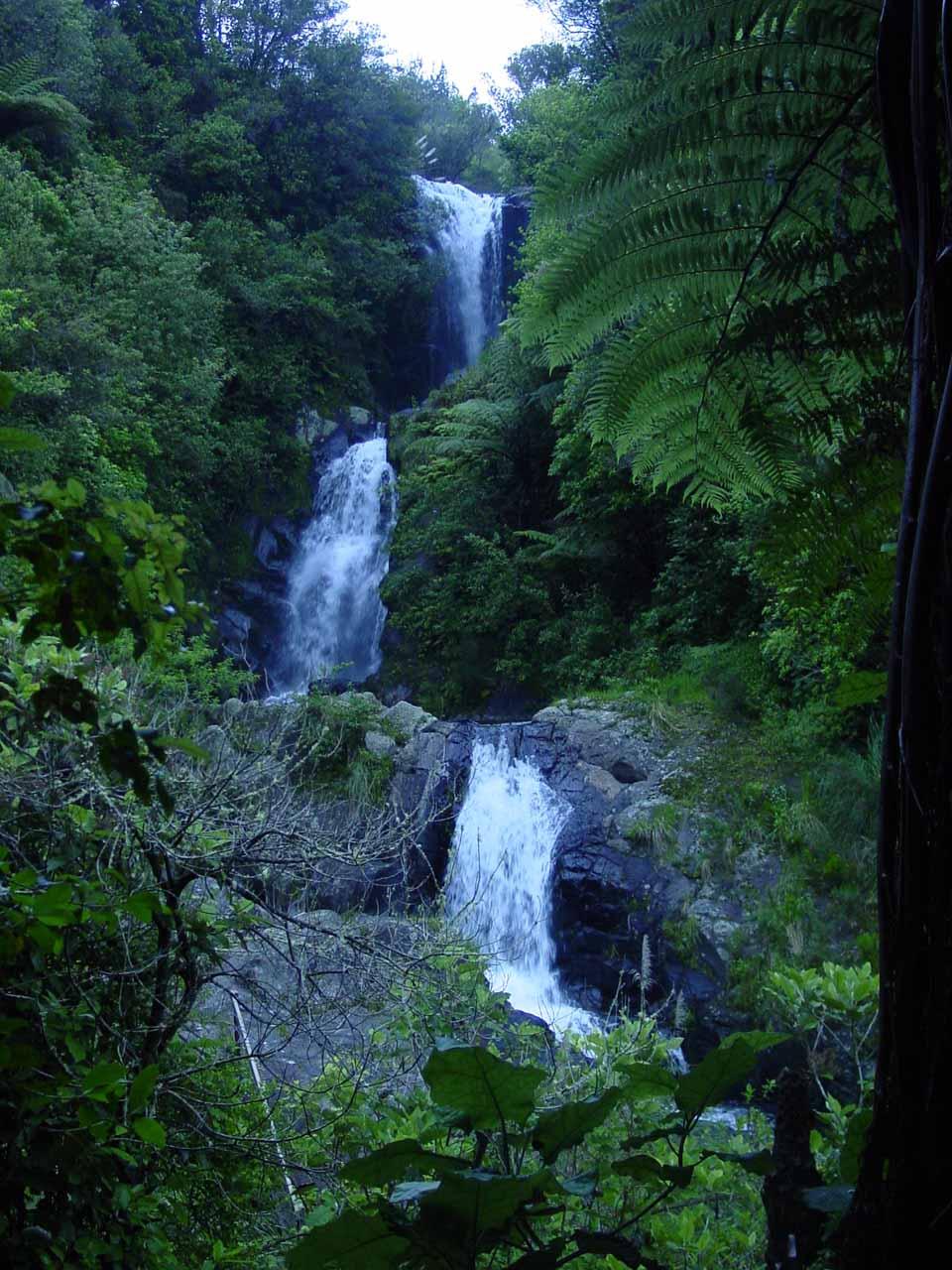Te Rerekawau (Kaiate) Falls