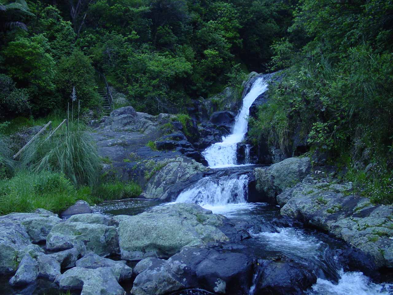 Looking back towards a partial view of the lowermost tier of Te Rererekawau Falls from the bridge crossing just downstream of it