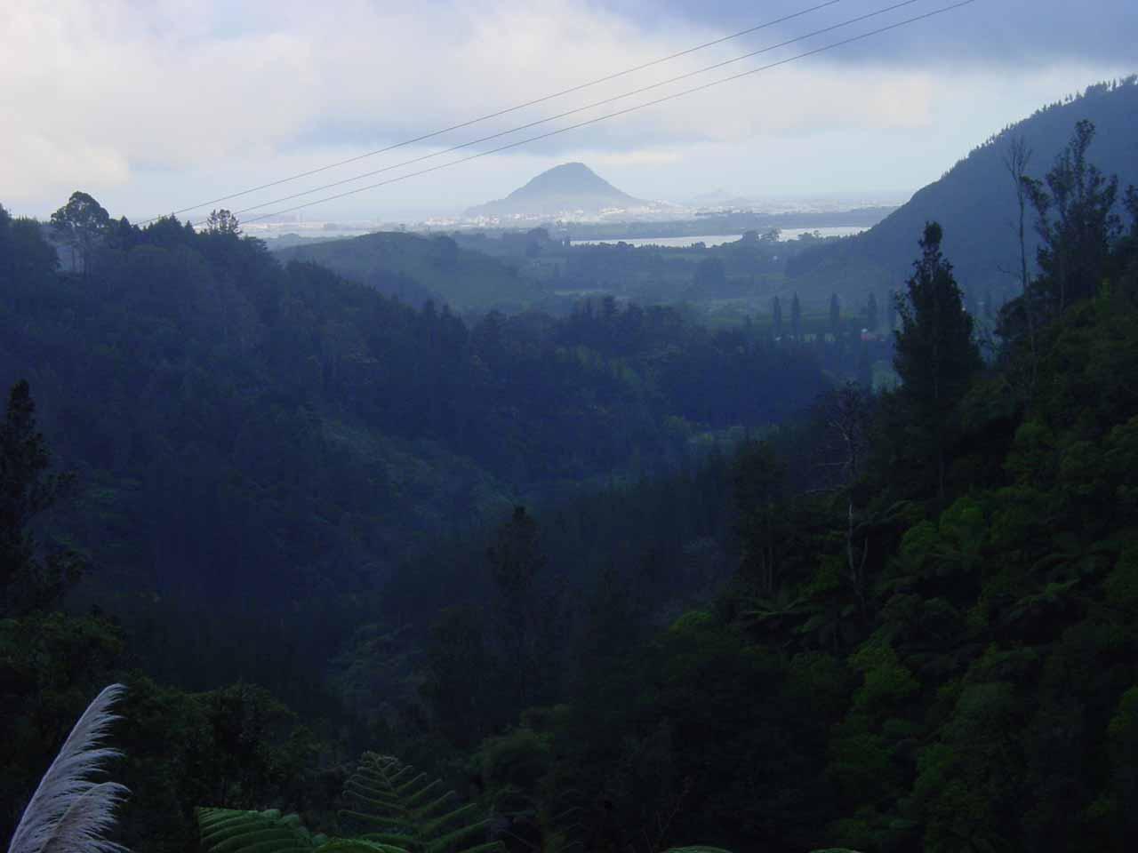 Further to the south along Tauranga Bay was the town of Tauranga, where on the Rerekawau Falls hike, we got this view back towards Mt Maunganui