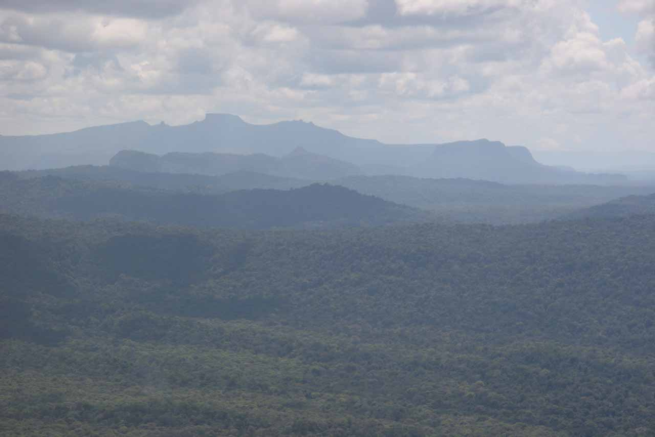 The rainforest expanse as we flew from Kaieteur to Orinduik