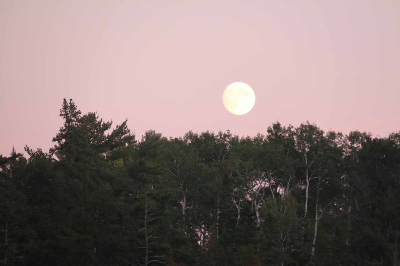 Big moon rising above the trees from the other side of Kakabeka Falls