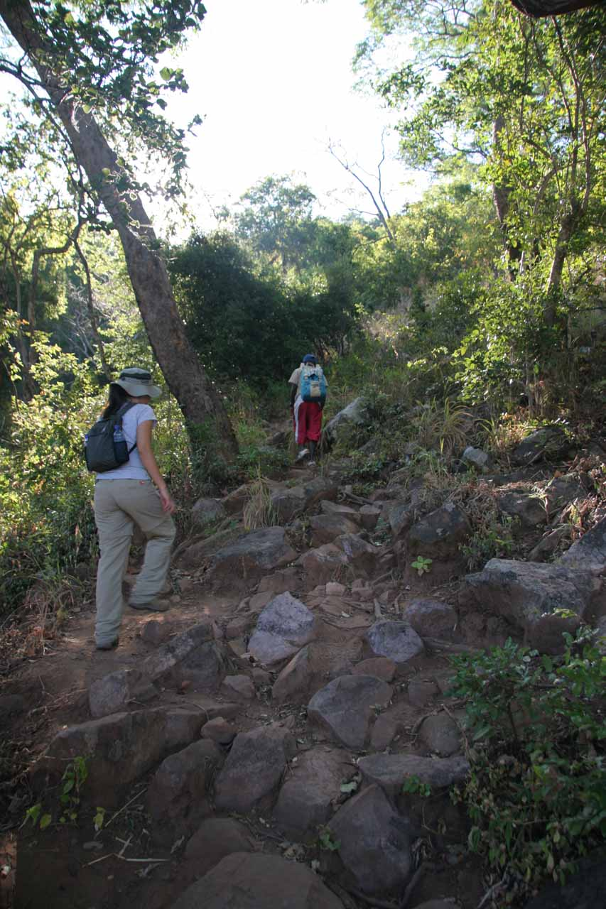 The trail climbed steeply pretty quickly after it started and we were appreciative of the morning shade