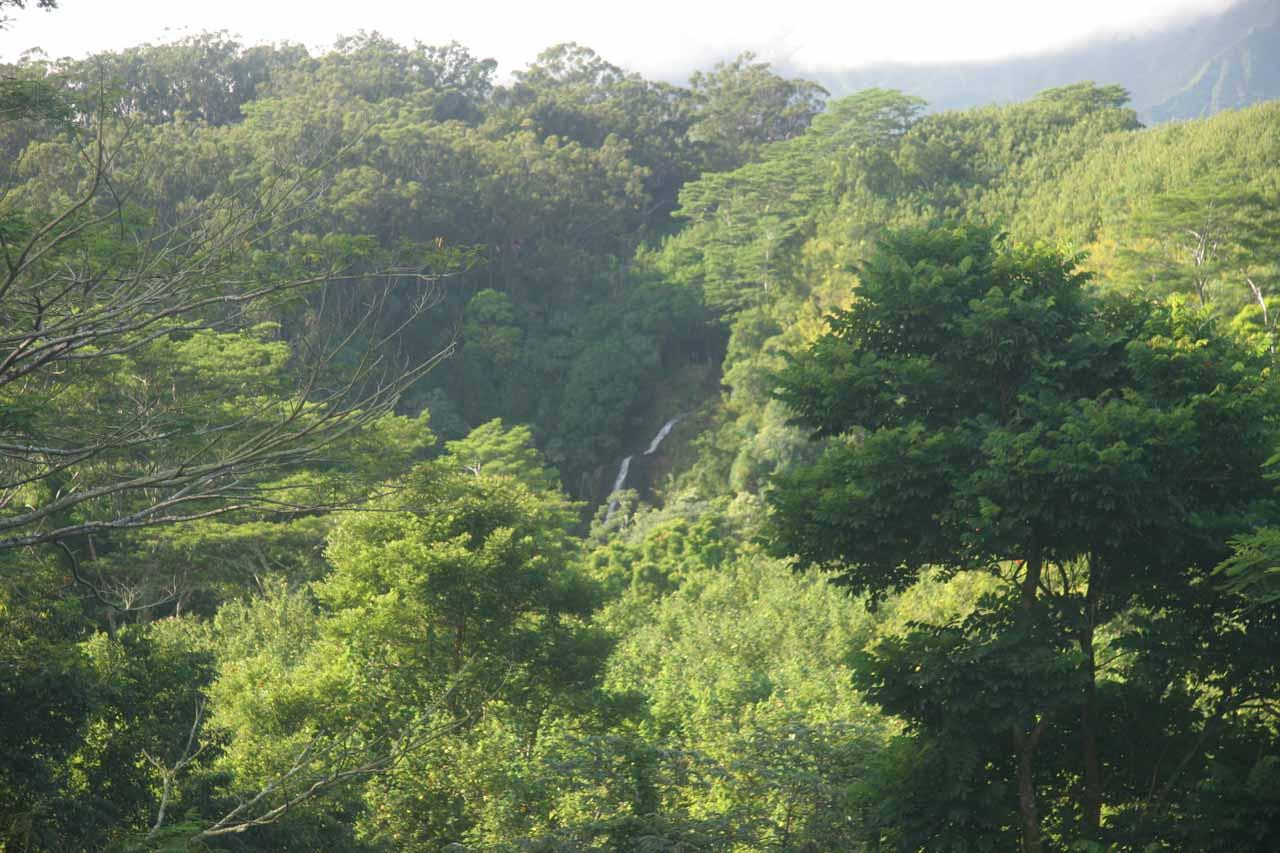 Distant view of Kalihiwai Falls