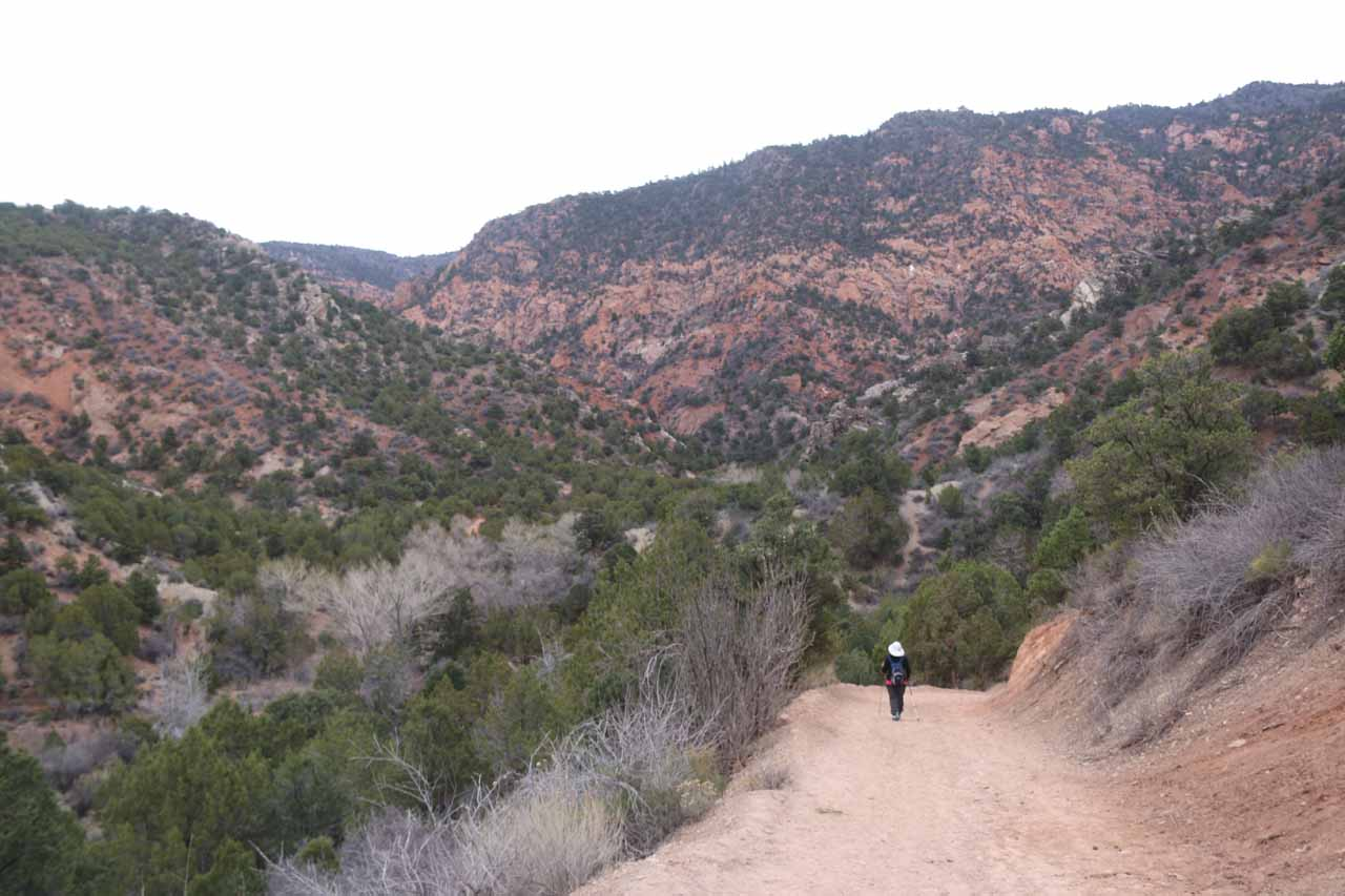 Descending into Kanarra Creek Canyon after the initial climb