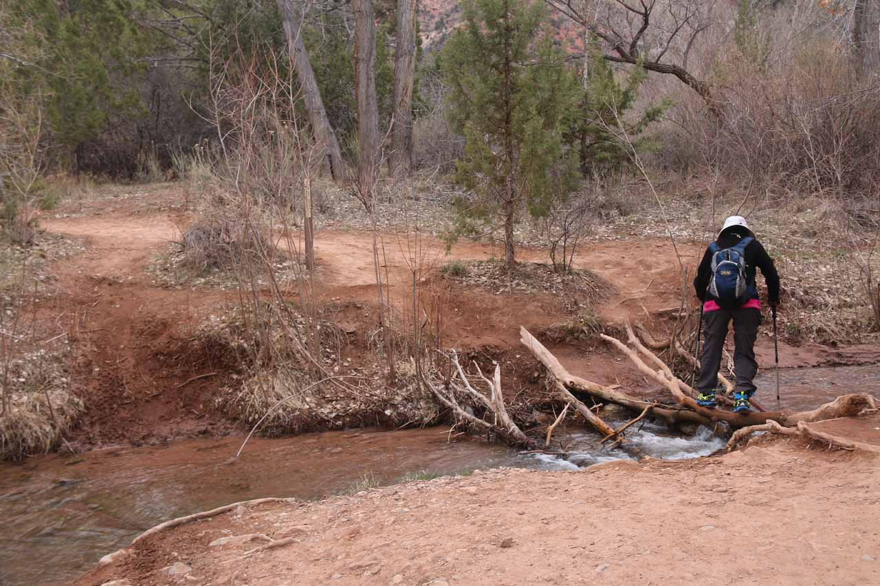 This was the first crossing of Kanarra Creek