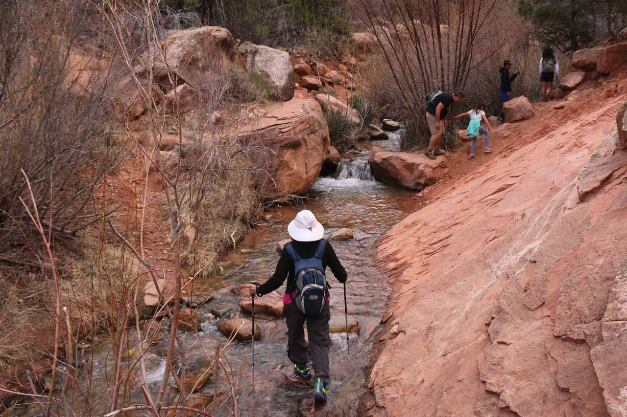 By this point in the hike, it was probably much easier to just scramble within Kanarra Creek than it was to try to stay dry (as the folks in front of us were attempting to do)