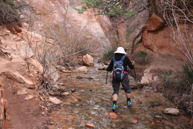 Mom keeping her balance while stream walking over slippery and uneven boulders with the aid of trekking poles