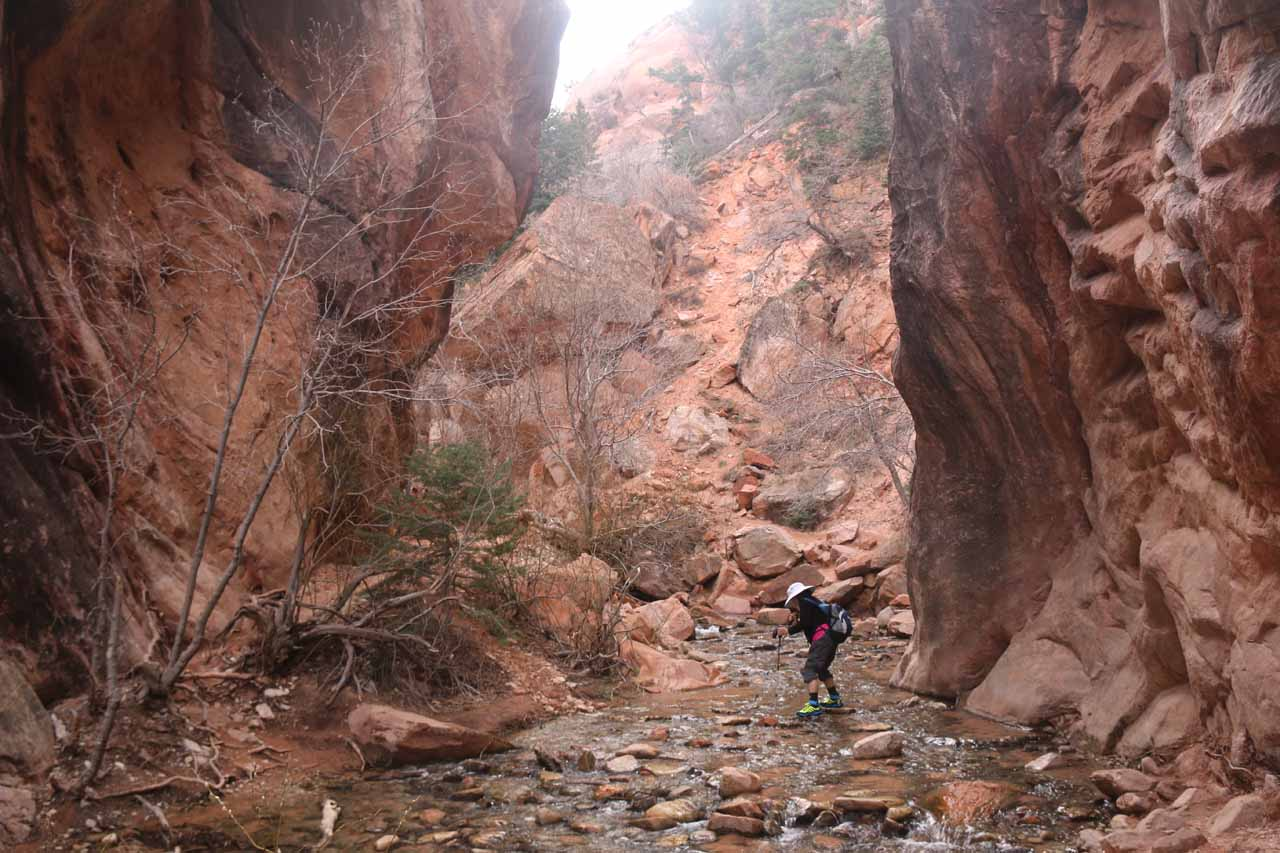 By this point in the hike, the canyon walls had closed in to the point that resistance to getting wet was futile. It was time to commit