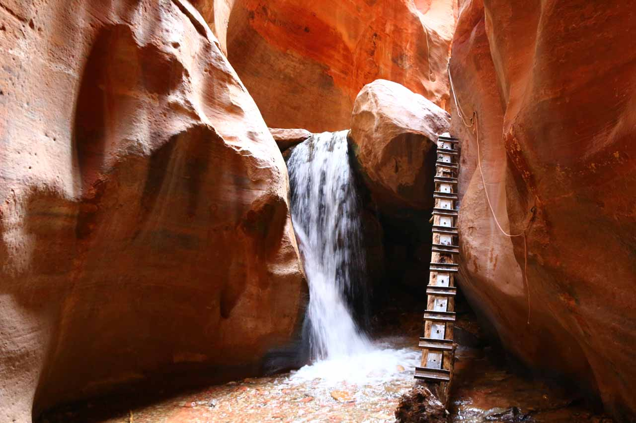 This was the first of the main Kanarraville Falls, and it was probably the most photographed spot in Kanarra Creek Canyon. For most visitors, this would be the turnaround point