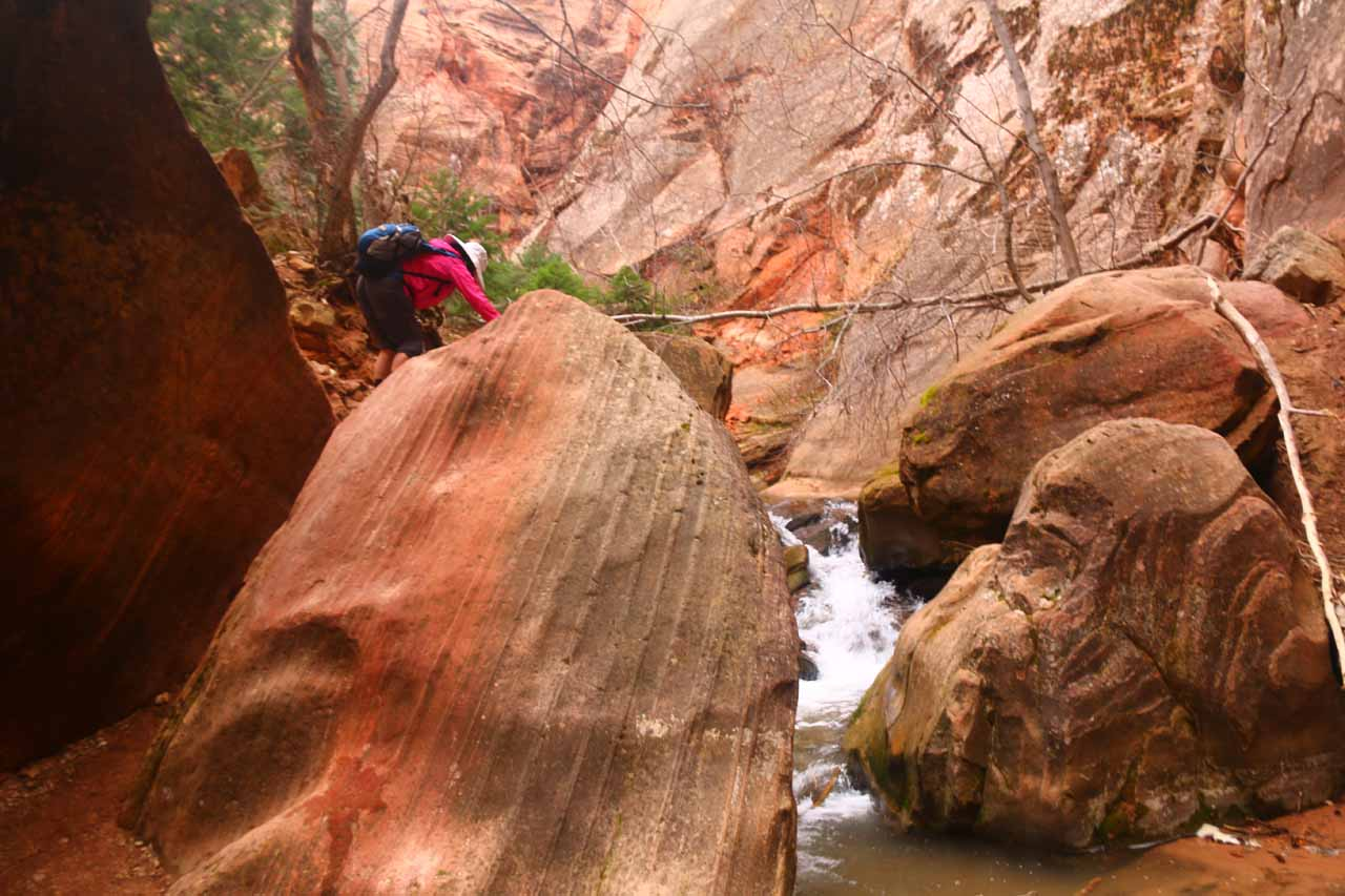 Mom squeezing her way up this boulder obstacle just downstream from a two-tiered cascade