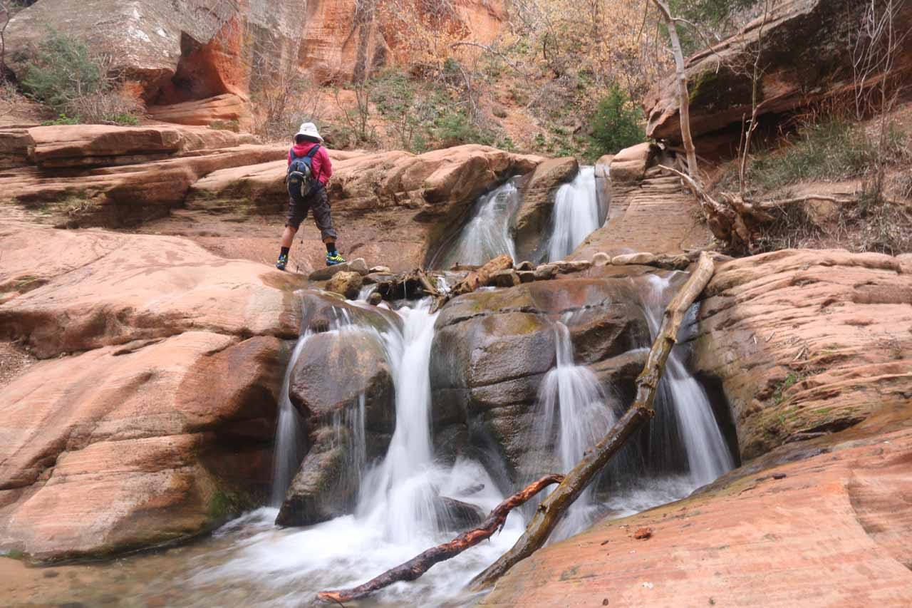 Frontal look at the two-tiered cascade on Kanarra Creek