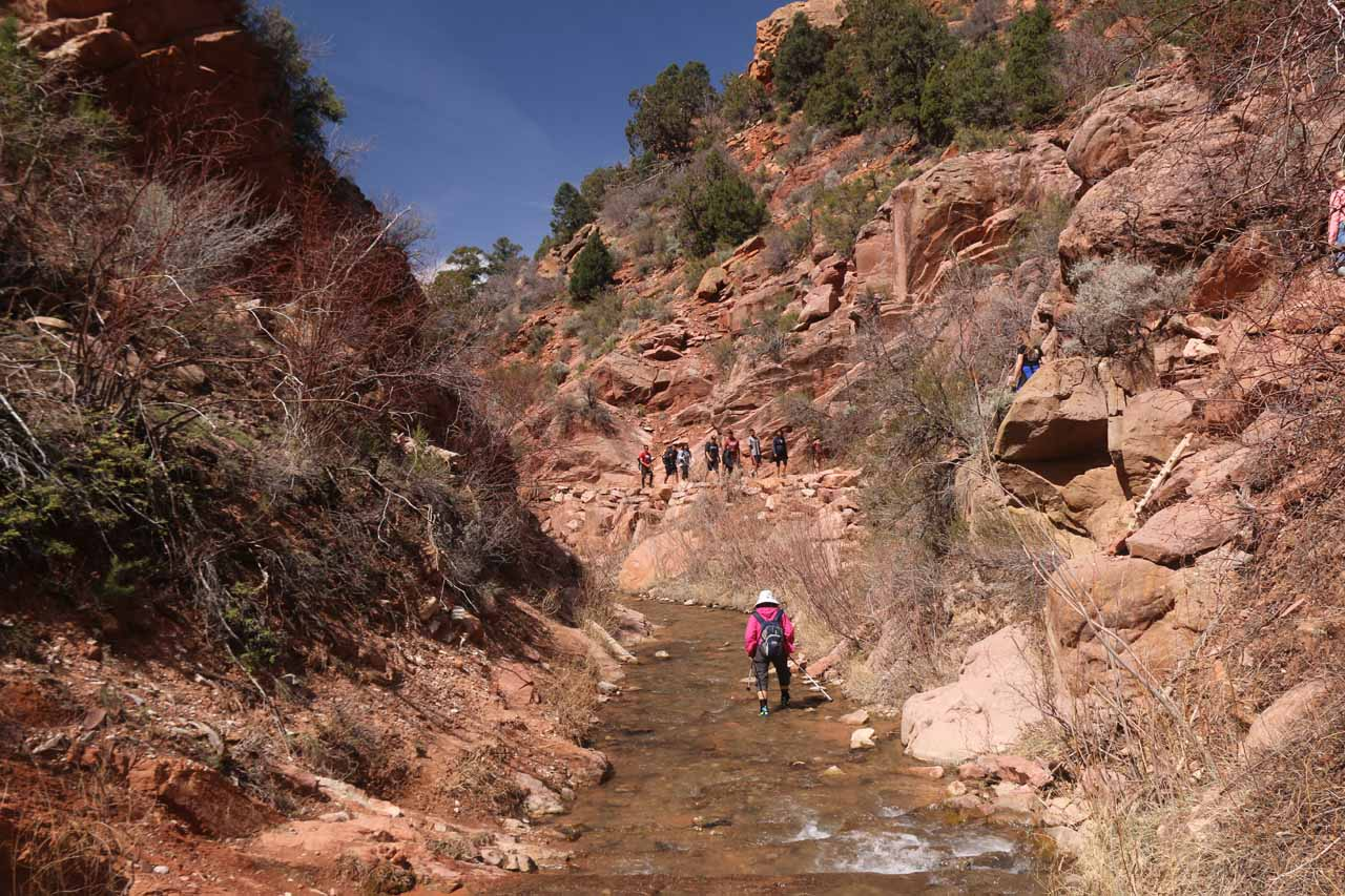 At this crossing of Kanarra Creek, we opted to go through the water instead of dealing with traffic on the upper ledge trail