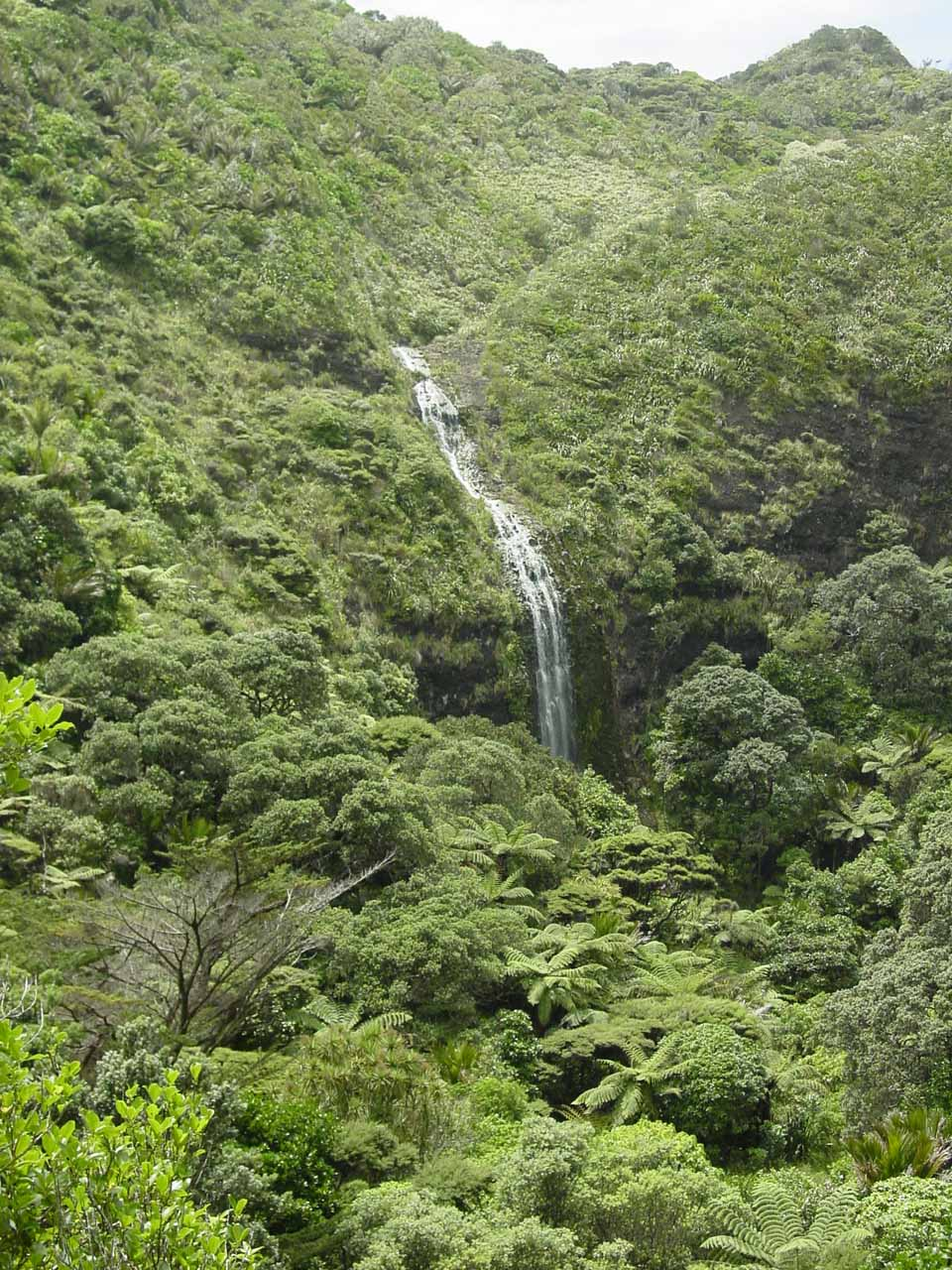As I was descending towards the base of Karekare Falls, I got this view of it, which showed that there was much more to this waterfall than its main drop