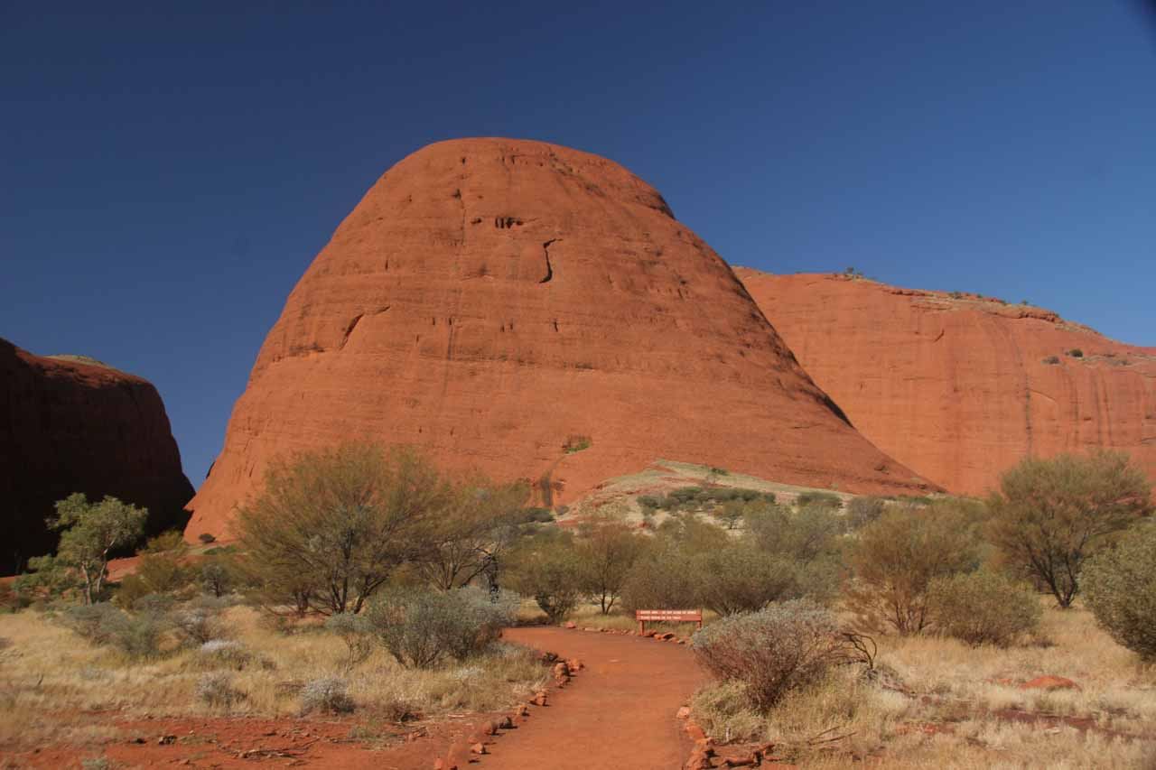 Meandering amongst the domes of Kata Tjuta