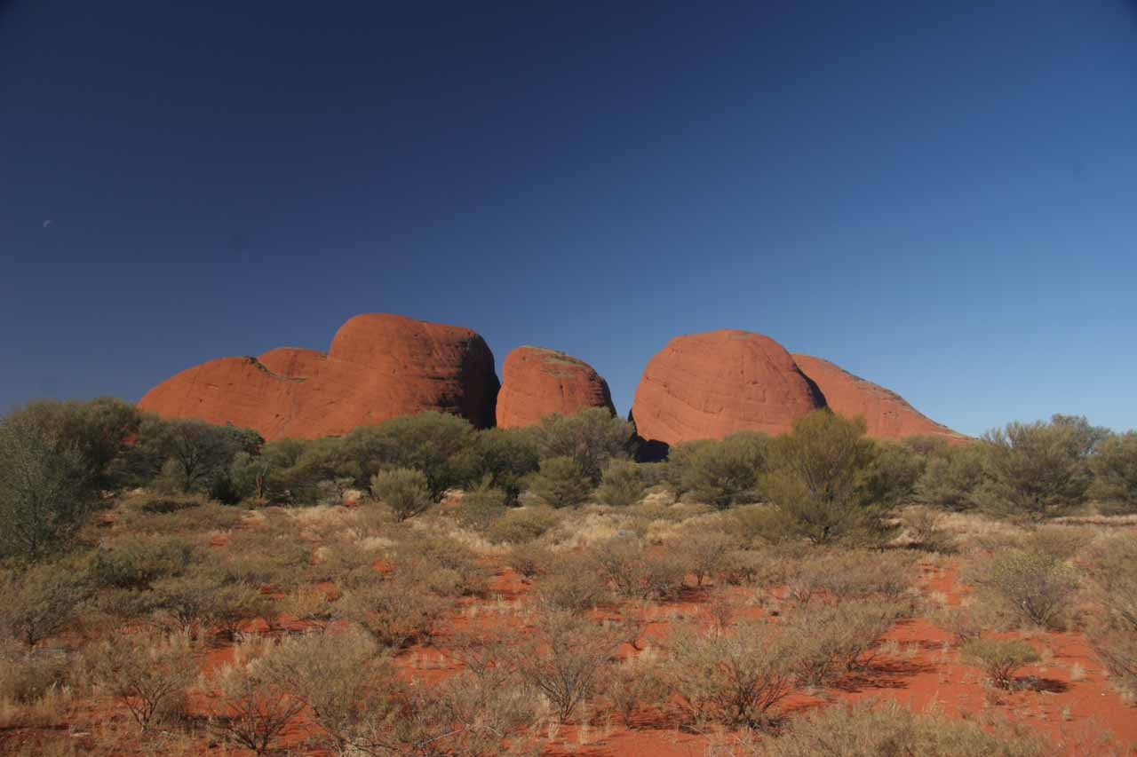Looking back at the Kata Tjuta against the cloudless skies