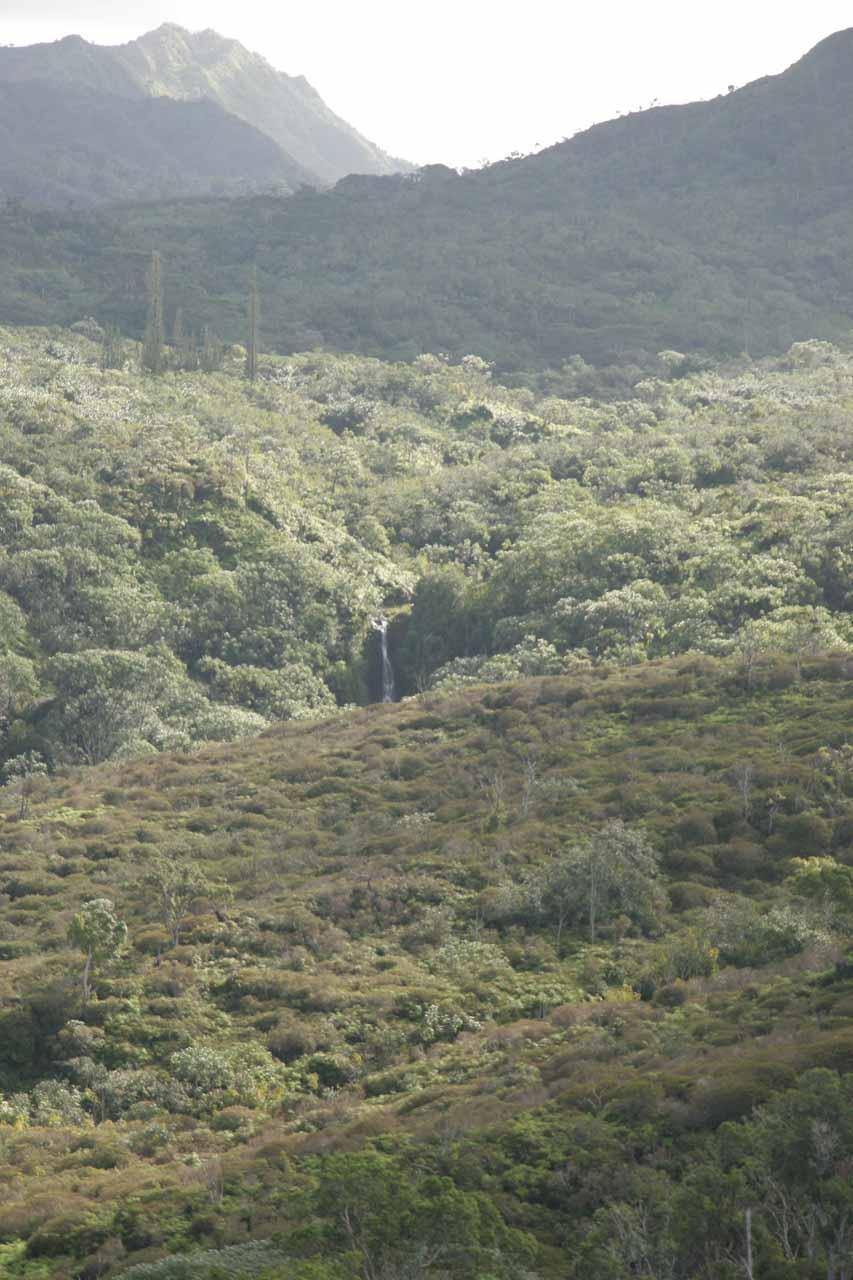 Approaching Pu'u Ka Ele Falls