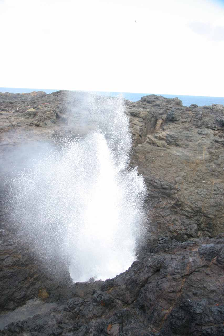 Kiama Blowhole going off