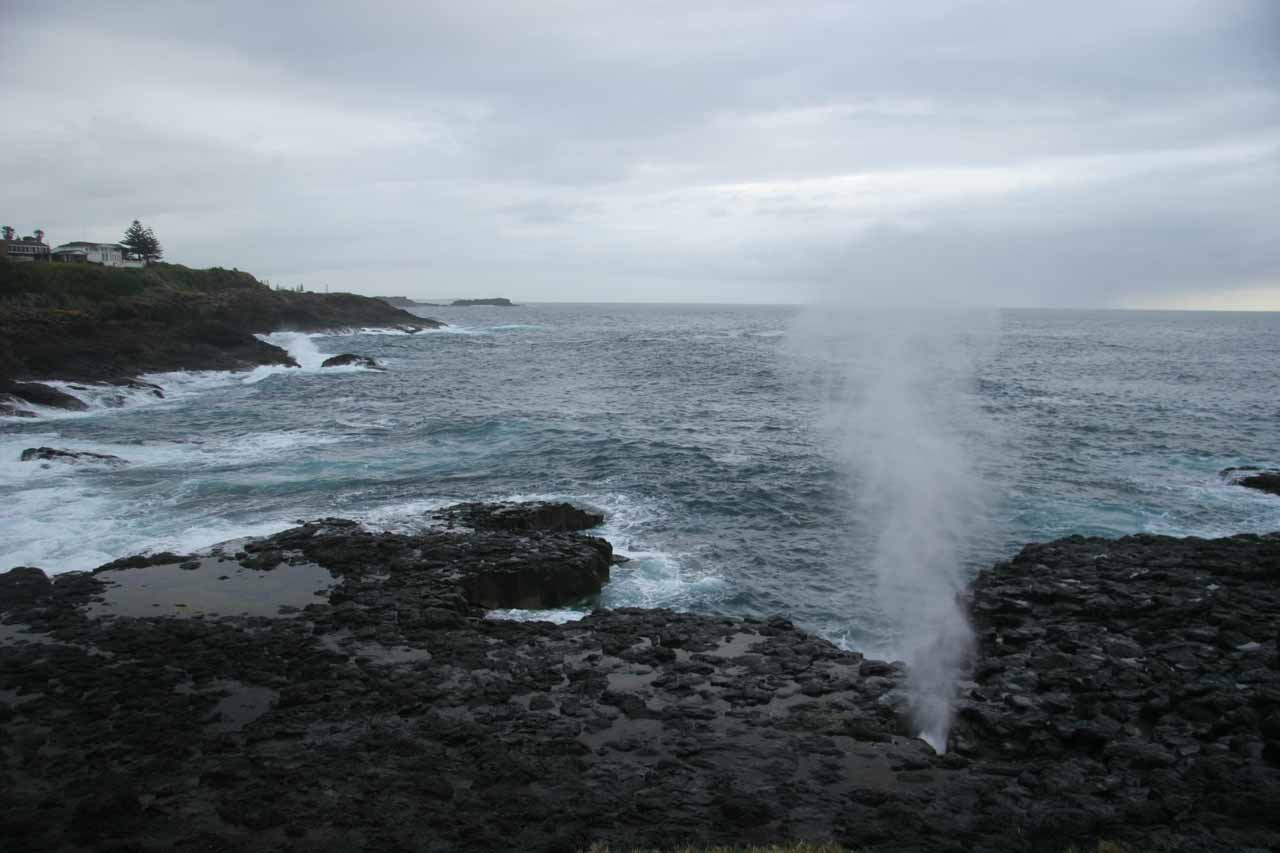 Also near the town of Kiama was the Little Kiama Blowhole, and as you can see from this photo, was quite scenically situated