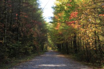 King_Creek_Falls_005_20121015