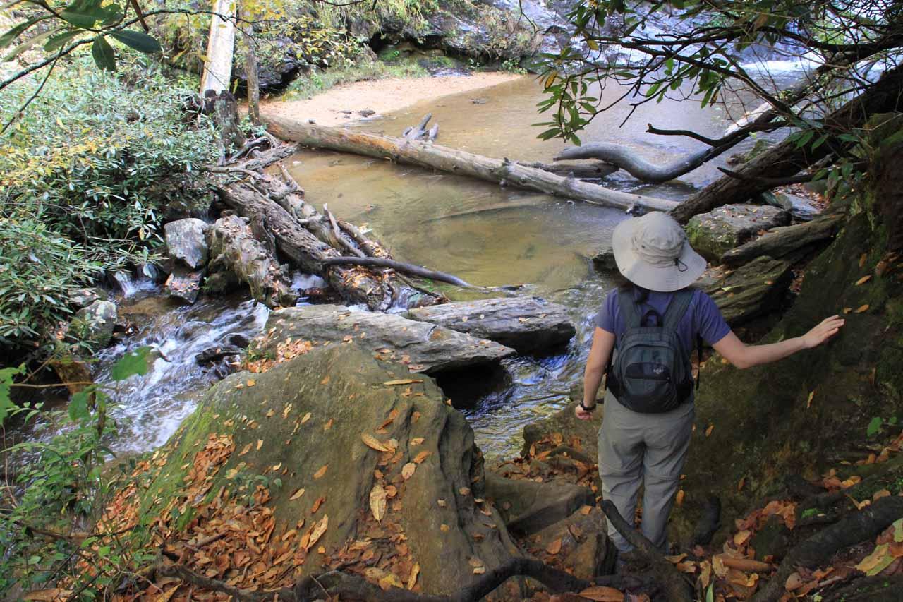 Near King Creek Falls
