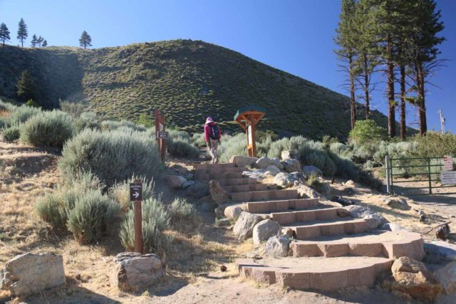Kings_Canyon_Falls_005_06212016 - Mom walking up the steps at the start of the Kings Canyon Falls Trail