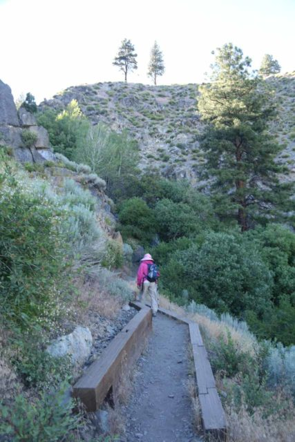 Kings_Canyon_Falls_029_06212016 - Mom approaching the well-vegetated gully containing the hidden Kings Canyon Falls
