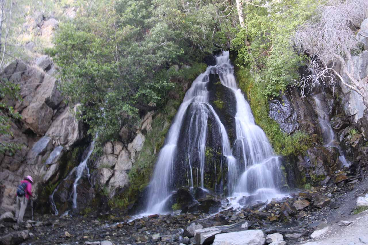 Kings Canyon Falls near Carson City