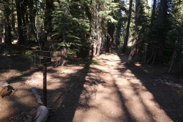 Kings_Creek_Falls_076_07122016 - The Kings Creek Falls Trail approaching the trail junction with the Bench Lake Trail