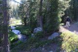 Kings_Creek_Falls_125_07122016 - Dad continuing on the Kings Creek Trail with Kings Creek itself meandering alongside