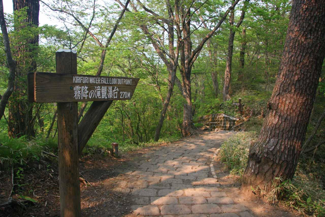 On the nature walk leading to the Kirifuri Waterfall lookout
