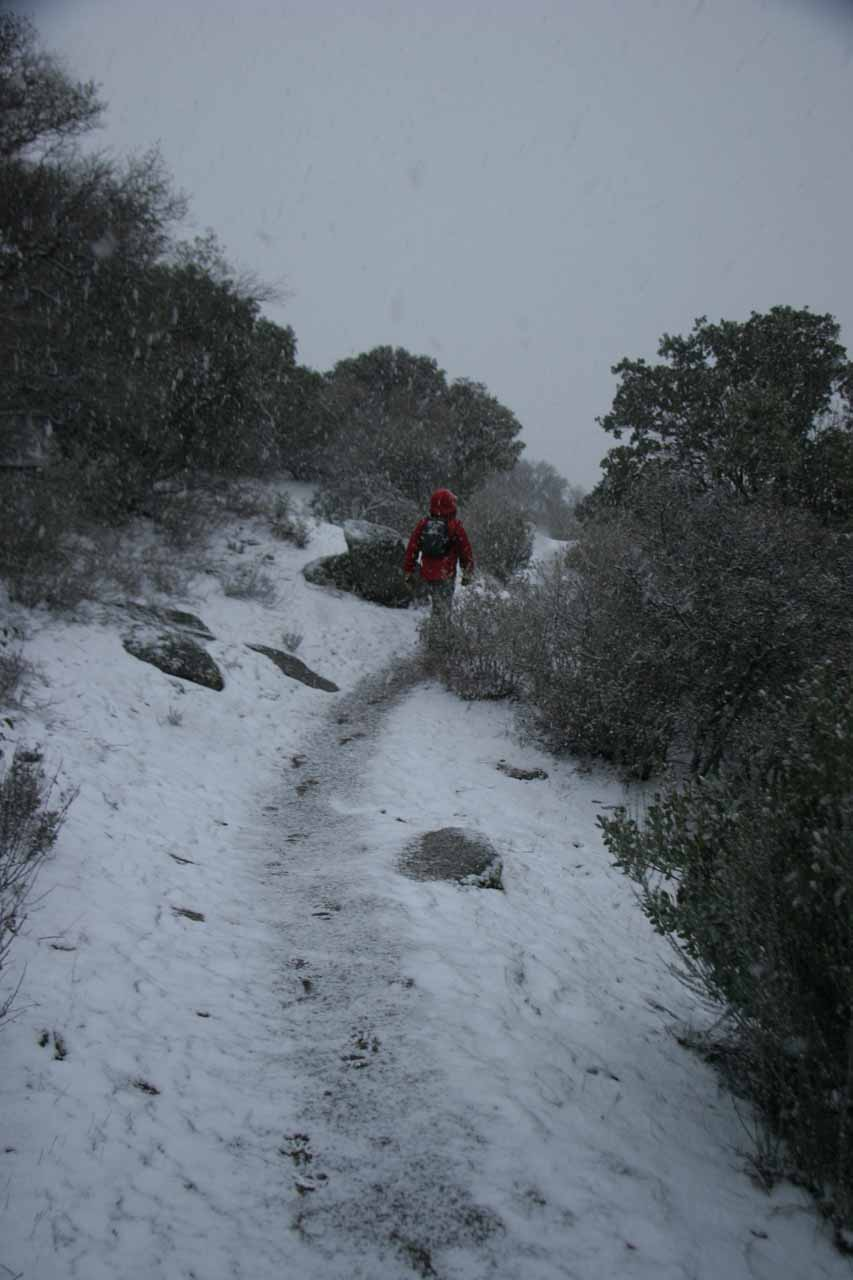 Heavy snowfall conspired to conceal the Pacific Crest Trail
