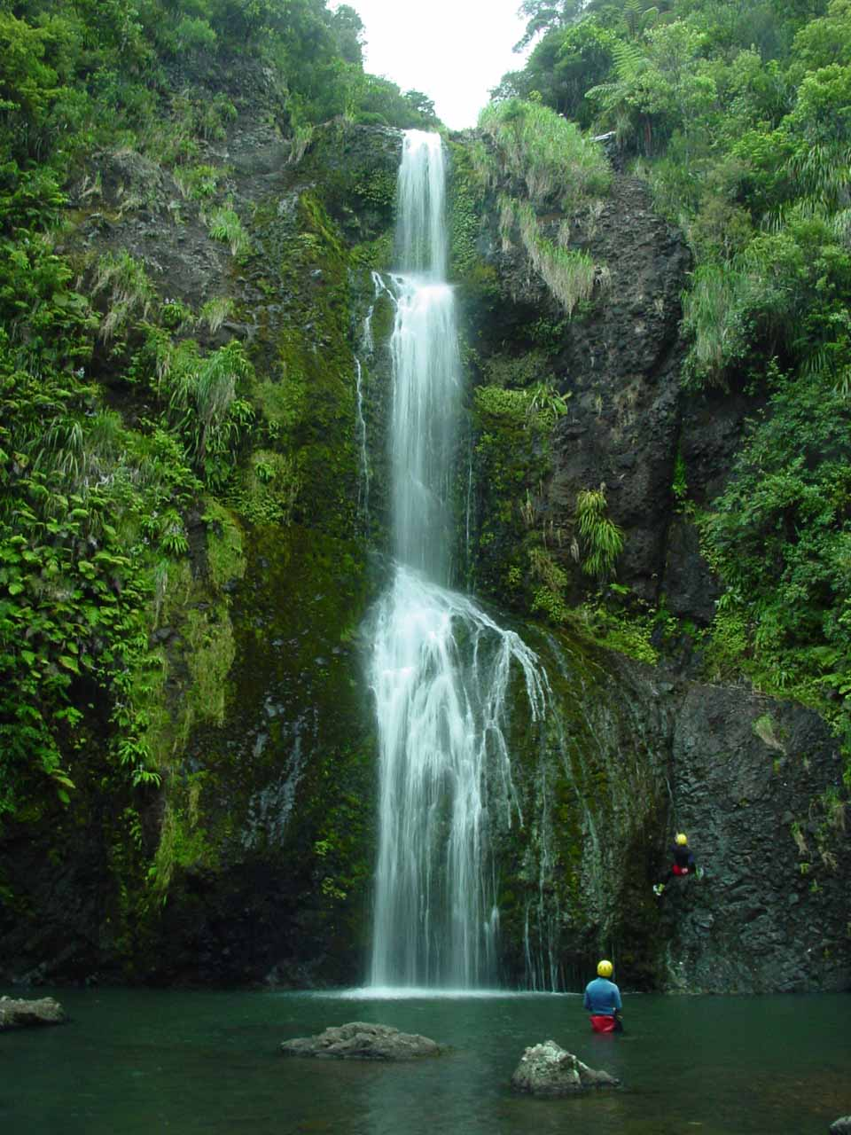 On my 2004 visit to Kitekite Falls, I saw abseilers rappeling alongside the waterfall