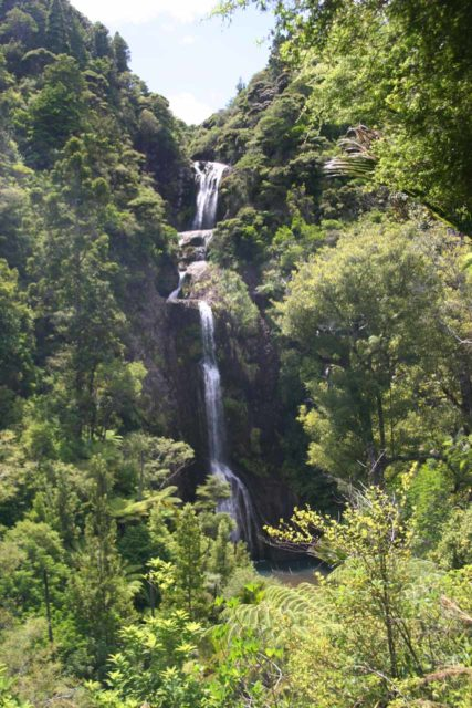 Kitekite_Falls_017_01092010 - Kitekite Falls