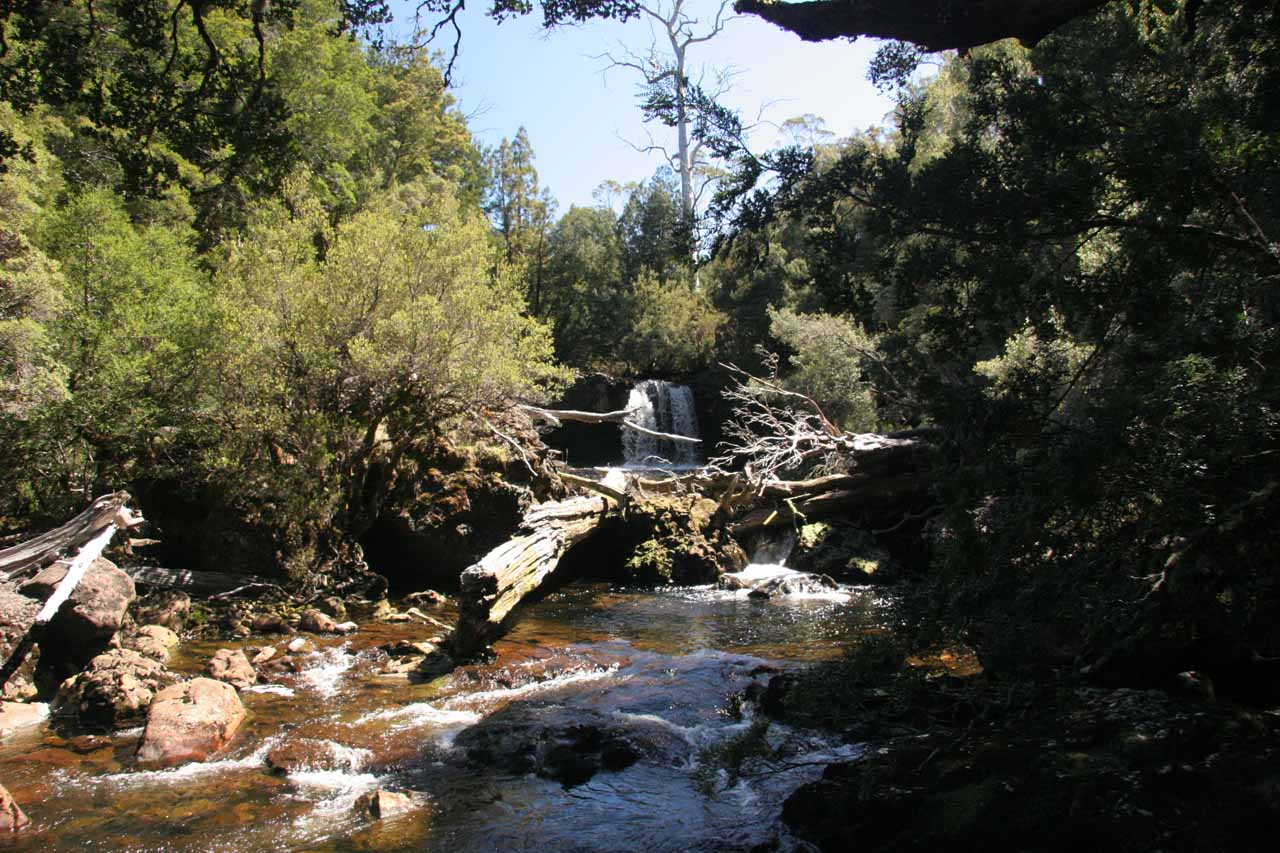 Looking upstream back at the Knyvet Falls, which was the second waterfall along the Pencil Pine Creek Walk